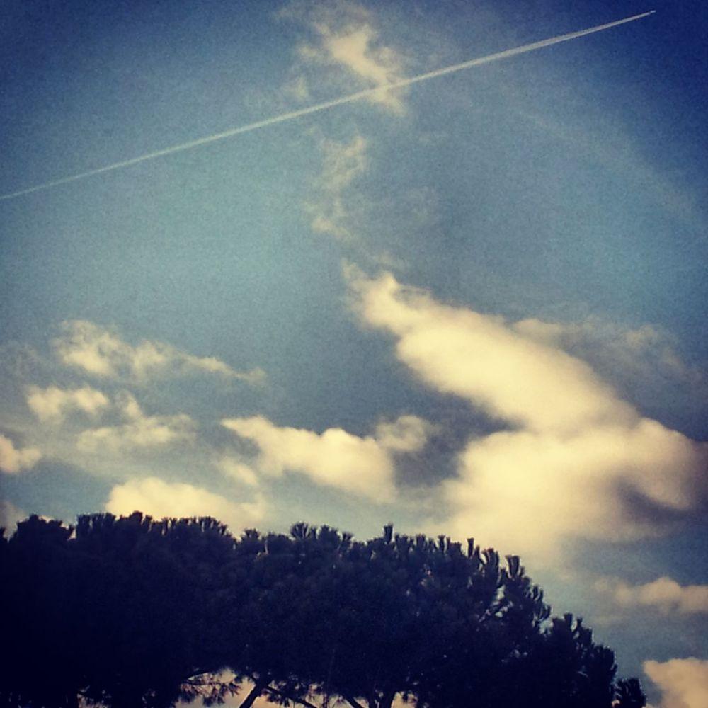 Sky Blueandwhite Heloveme