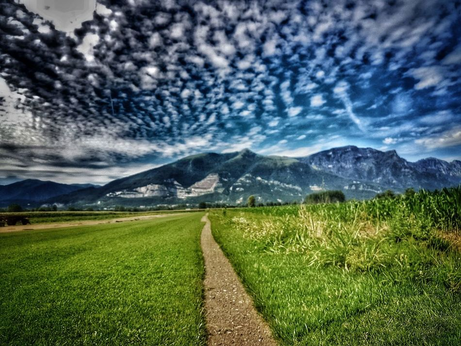 Montagna Nature Photography Beauty In Nature Agriculture Scenics Mountain Nature Field Green Color Landscape Tranquil Scene Mountain Range Tranquility Rural Scene Growth Outdoors Sky No People Day Rice Paddy Freshness Star - Space