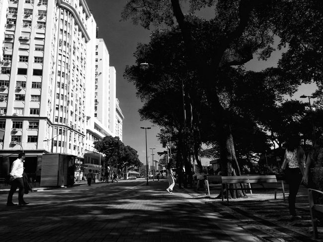 The city centre of Rio de Janeiro midafternoon.Afternoon Architecture Black And White Building Exterior Business District Cinelândia  City City Center Contrast Day Downtown Financial District  Monocrome Outdoors People Sky Tree