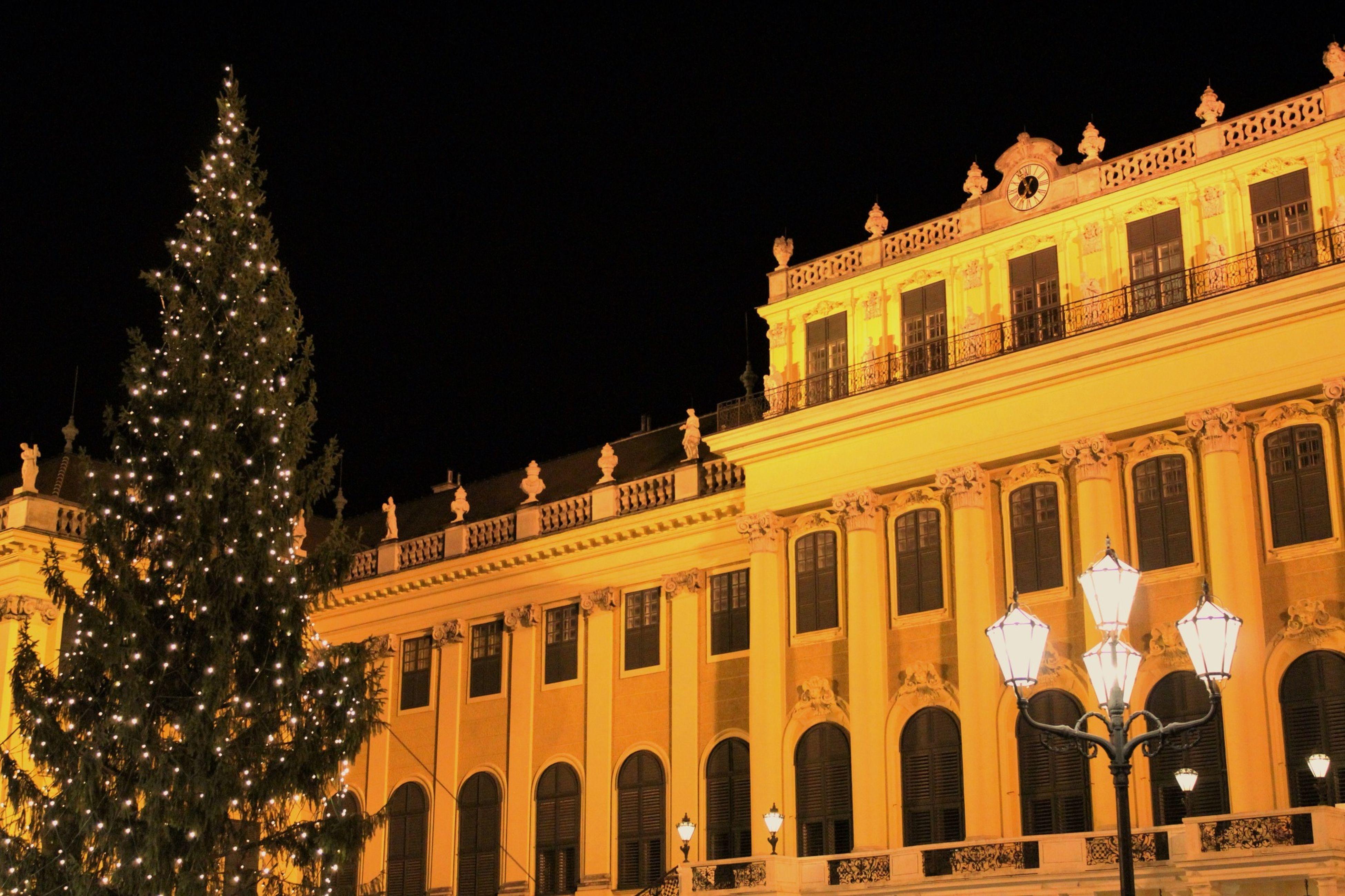 I wish you all Merry Christmas! Feliz Navidad! Frohe Weihnachten! Light Night Lights Night Christmas Christmas Tree Christmas Lights EyeEm Best Shots EyeEm Best Edits Eyem Best Shots