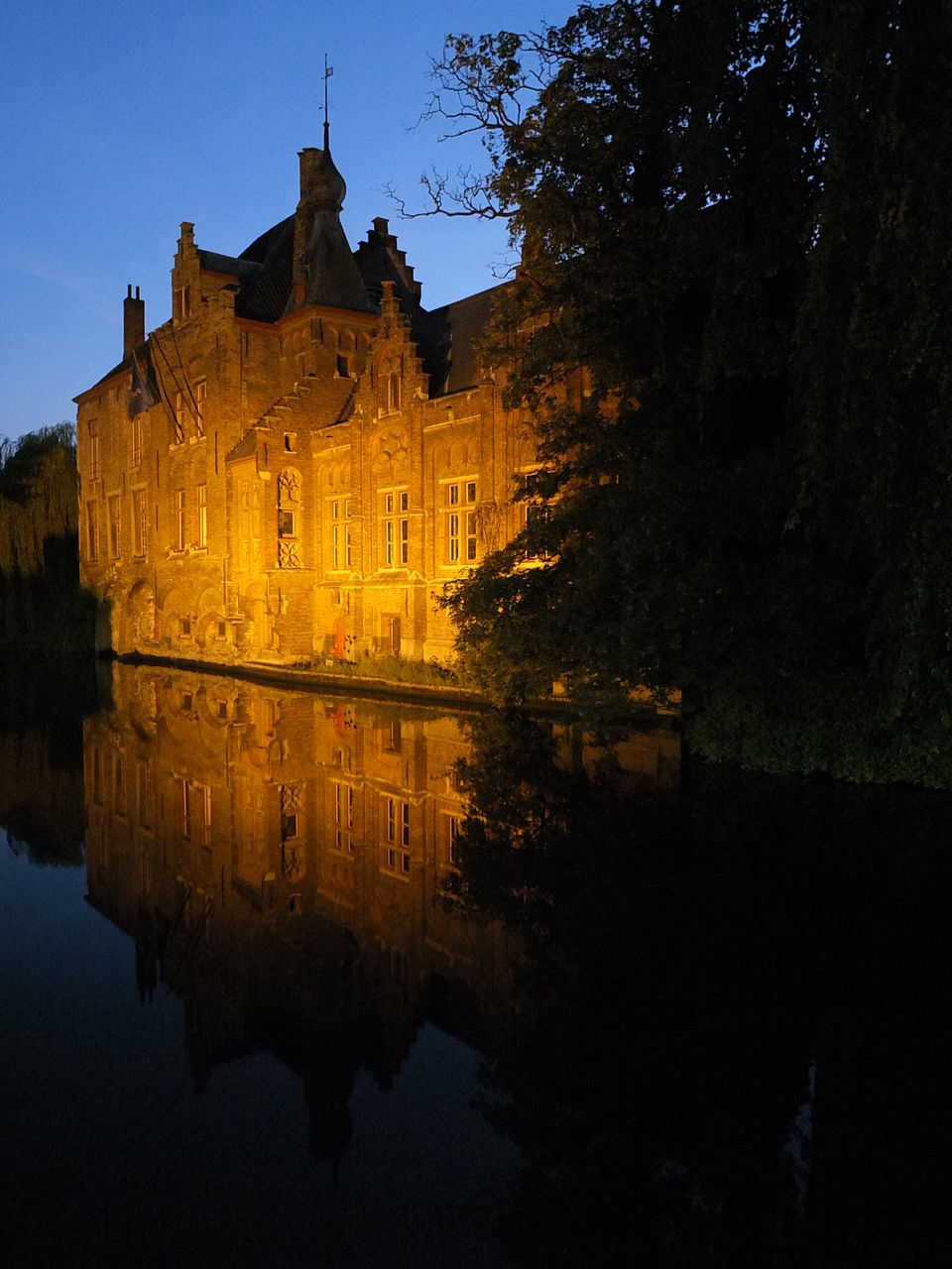 architecture, building exterior, built structure, reflection, castle, water, history, waterfront, no people, outdoors, travel destinations, tree, sky, night, illuminated, nature