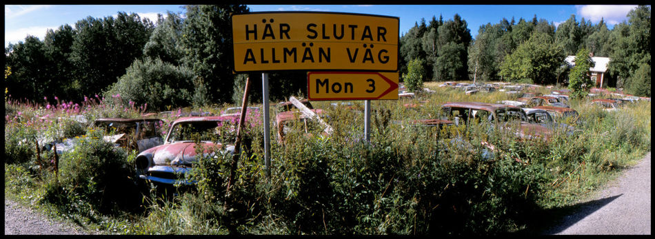 Panoramicscope in Båstnäs Abandonded American Cars Analogue Photography Båstnäs Båstnäs Car Cemetery Båstnäs Töcksfors Car Cemetery Cars In Nature Dystopia Grass Metal And Rust Muscle Cars Nature No People Outdoors Panoramic Photography Scandinavia Slide Photography Summer Swedish Summer Travel Trip To Nature Vintage Cars Vintage Cars. Wild