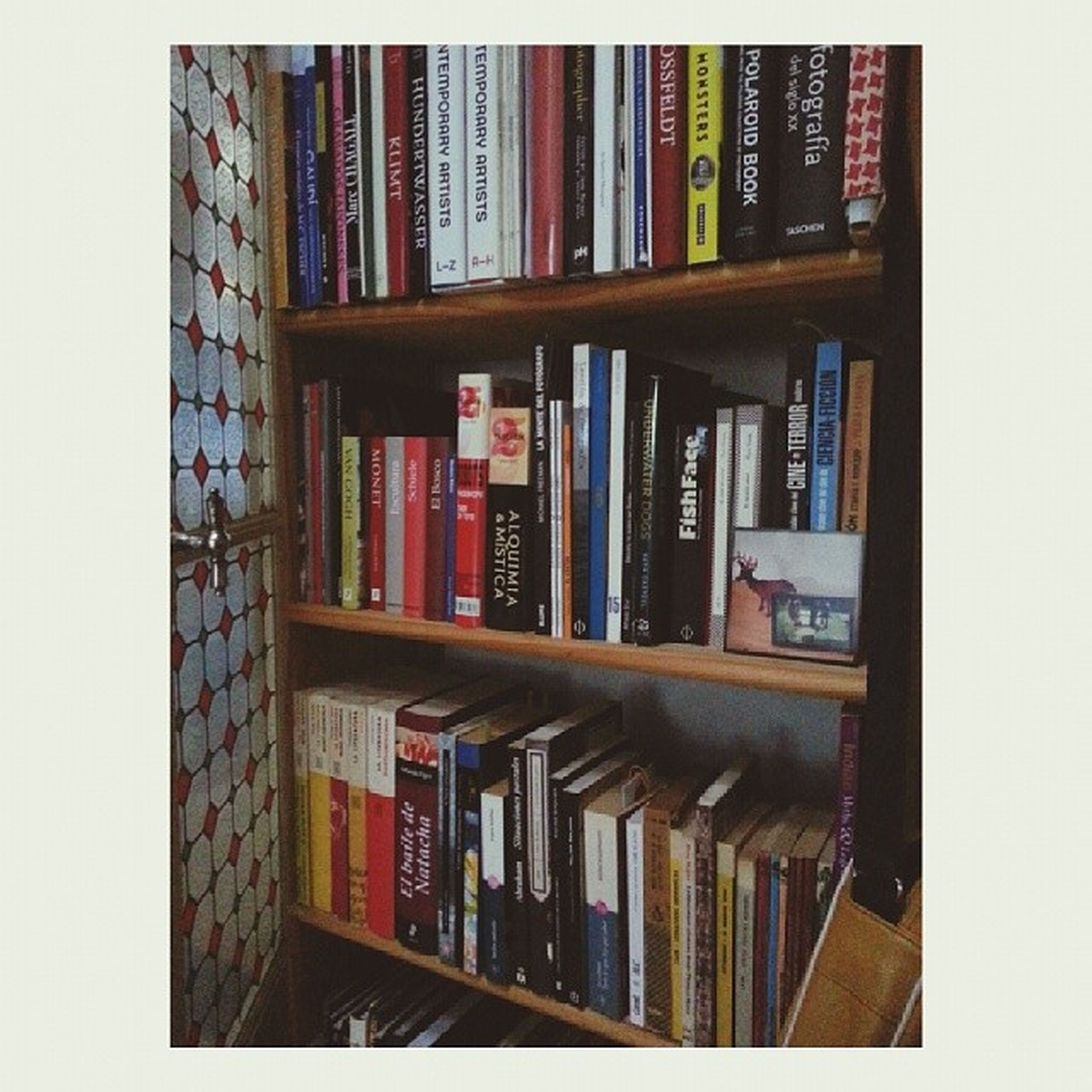 indoors, book, education, variation, bookshelf, large group of objects, shelf, transfer print, in a row, arrangement, order, abundance, auto post production filter, library, multi colored, no people, choice, architecture, literature, full frame