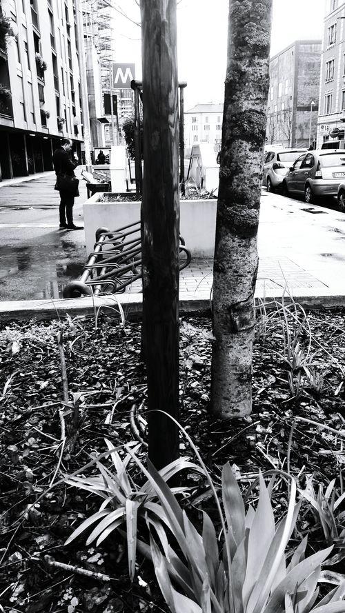 Black Street Milanocity Italy❤️ Black & White Blackandwhite Urban Effects & Filters Black And White Moscova Street