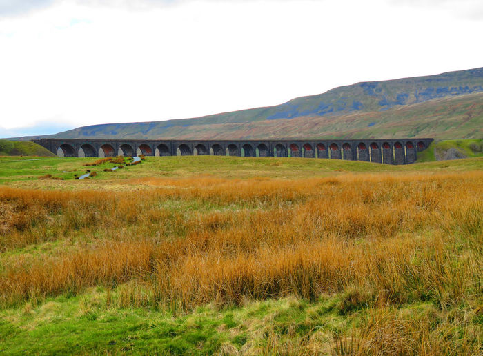 Beauty In Nature Landscape Ribble Valley Ribblehead Ribblehead Viaduct Ribbleheadviaduct Scenics Tranquil Scene Viaduct Viaducts Yorkshire Yorkshire Dales Yorkshiredales Bridge View Viaduct Arch Archway Bridge - Man Made Structure Bridge Photography Landscape_photography EyeEm Best Shots - Landscape EyeEm Best Shots EyeEmBestPics EyeEm Gallery EyeEm Railway Bridge