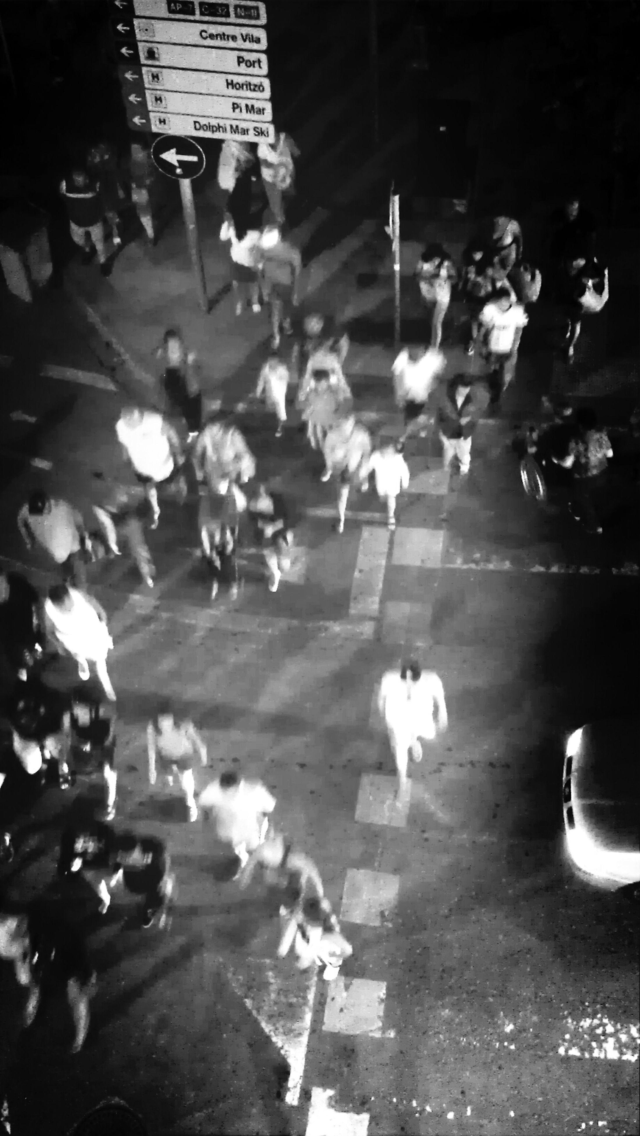 animal themes, street, domestic animals, pets, high angle view, dog, road, night, mammal, outdoors, one animal, walking, sunlight, shadow, city, incidental people, car, sidewalk, illuminated