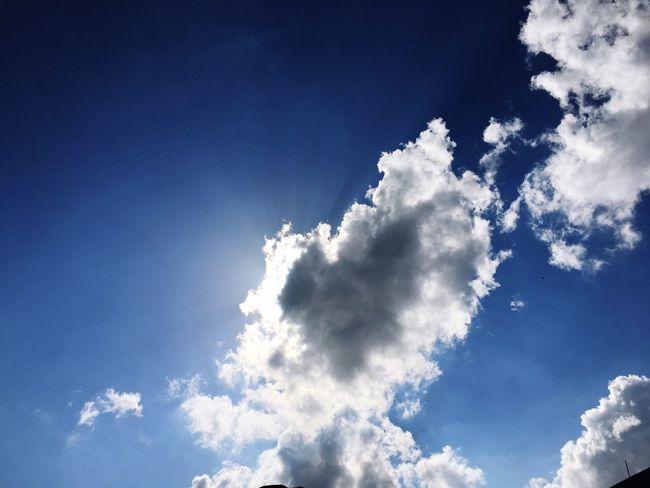 Sky Blue Hope Sun Covered Hide