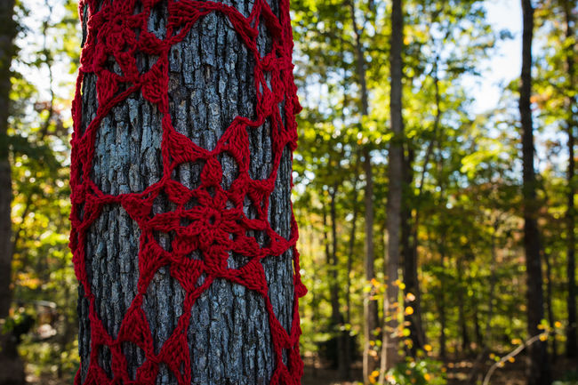Art Art And Craft Creativity Crochet Day Environment Focus On Foreground Growing Hanging Hugging A Tree HUMANITY Park Park - Man Made Space Photos That Will Restore Your Faith In Humanity Protection Red Selective Focus Symbol Tree