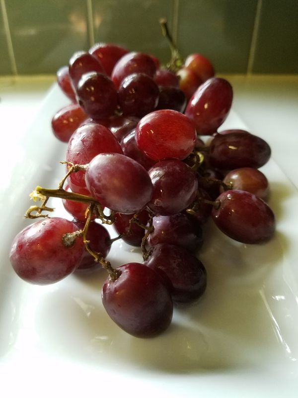 PURIST GRAPES The Purist (no Edit, No Filter) Organic Organicfruit Grapes Still Life The Song Of Color Eyeemphoto