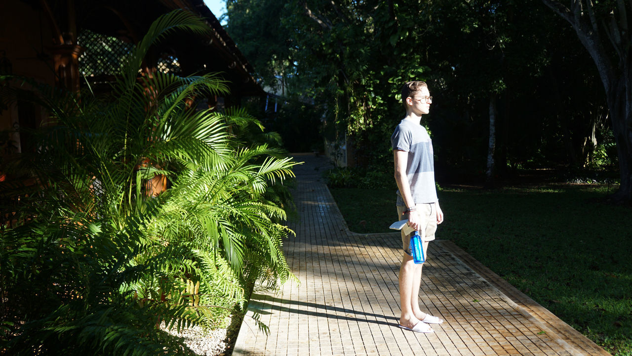 Grounded by light. Grounded Healthy Lifestyle Lifestyle Meditation One Person Outdoors Plants Real People Standing Summer Sunlight Travel Vegetation Vitality Yucatan Mexico