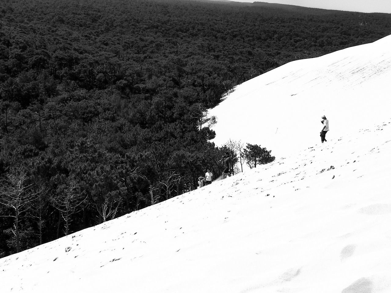Real People Lifestyles Nature Leisure Activity One Person Outdoors High Angle View Day Beauty In Nature Landscape Full Length Dune Sand Summer Dune Du Pyla Tranquil Scene Travel Destinations France Bnw Bnw_collection EyeEm Bnw Bnw_friday_eyeemchallenge Miles Away