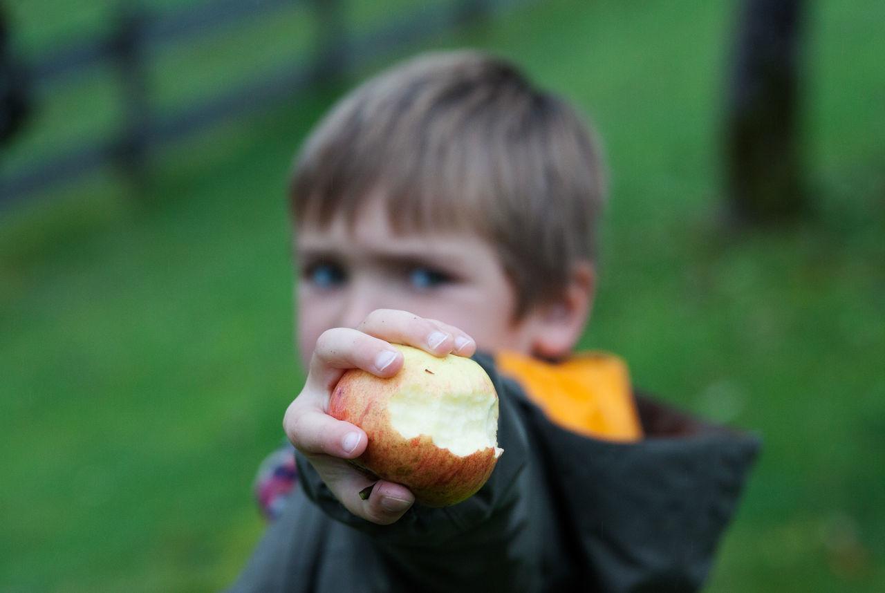 Beautiful stock photos of kids,  8-9 Years,  Apple,  Berchtesgaden,  Boys