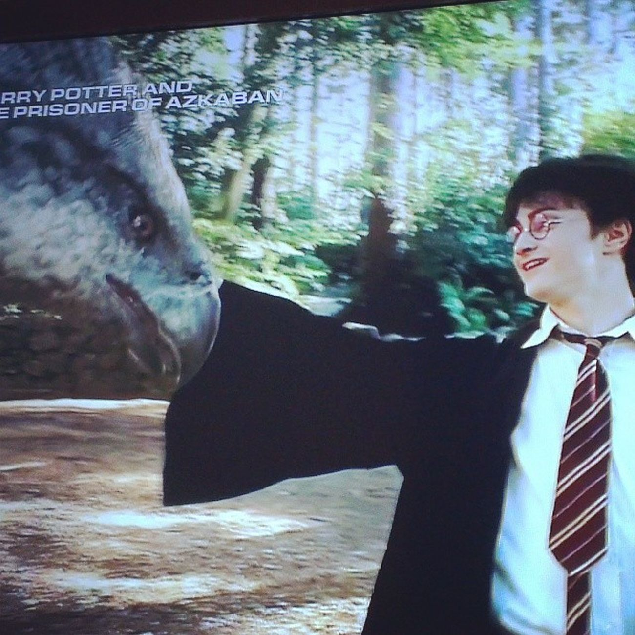 One of my favouritessst scenes ever! Definitely makes my happy moment Hpfever Nevergetover Hppoa Favouritemovie buckbeak 100happydays day52