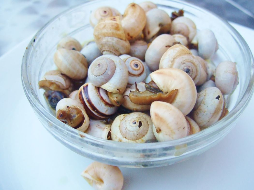 a bowl of small snails, Caracoles in Spain Caracoles  Food Food And Drink Organic Snack Snails Snails In Shells Still Life Small Snail Small Snails Snail Snack Cutesnail Bowl Of Snails Cooked Snails Snail Face Hay Caracoles Visual Feast Mix Yourself A Good Time