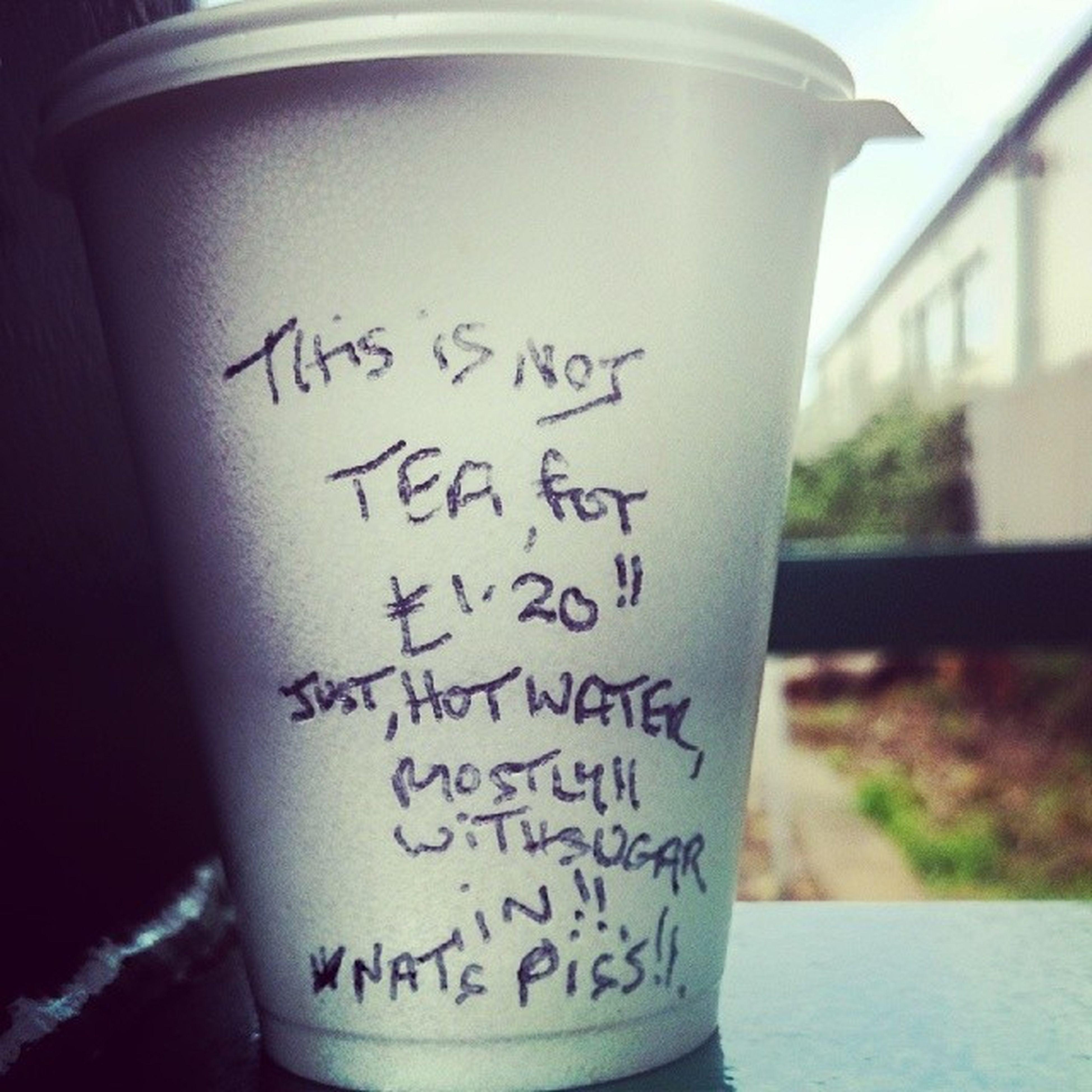 Bitter tea drinker. Tea Gnatspiss