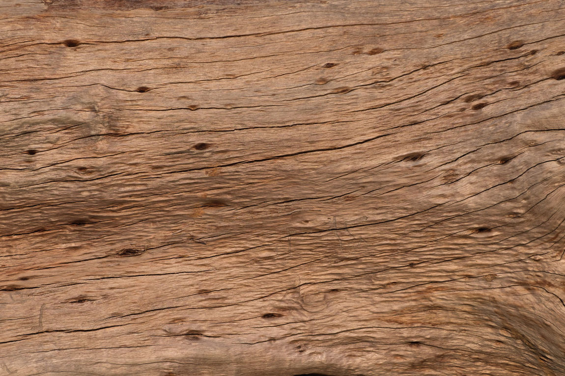 Old wood bark textue Backgrounds Bark Brown Carpentry Cracked Decay Detail Driftwood Knot Log Material Nature Old Stump Surface Texture Tree Wood Wood - Material Wood Grain Wooden