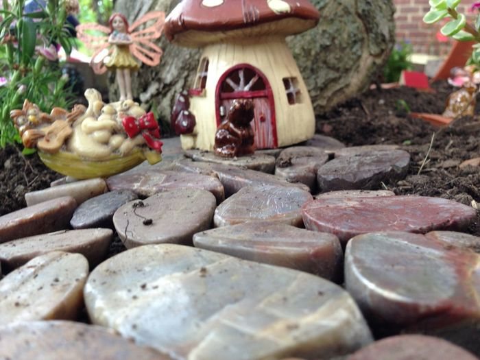 Abundance Brown Choice Close-up Fairy Garden Fairytale Garden Heap Indoors  Large Group Of Objects Macro Beauty Organic Stack Still Life Table Variation Wood