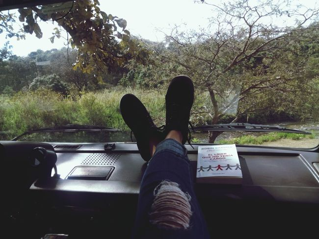 Inthewoods Land Vehicle Outdoors One Person Tranquility Enjoying Life Reading Book