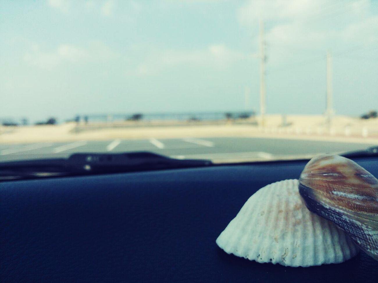 海に行った記念に。