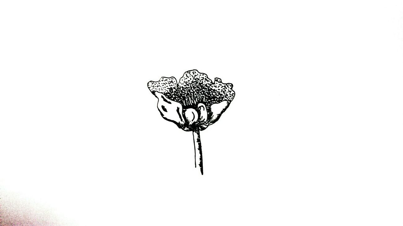 A little flower The Tree Academy Relaxing Enjoying Life Sketch