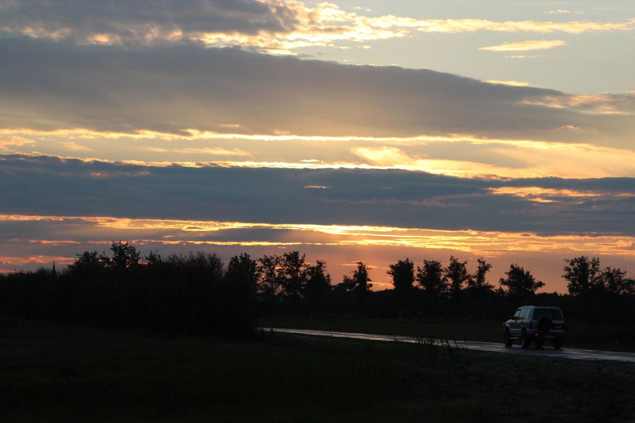 43 Golden Moments Car Goodbye Land Vehicle Leaving Sky Summer Sunset The Purist (no Edit, No Filter) Transportation Tree
