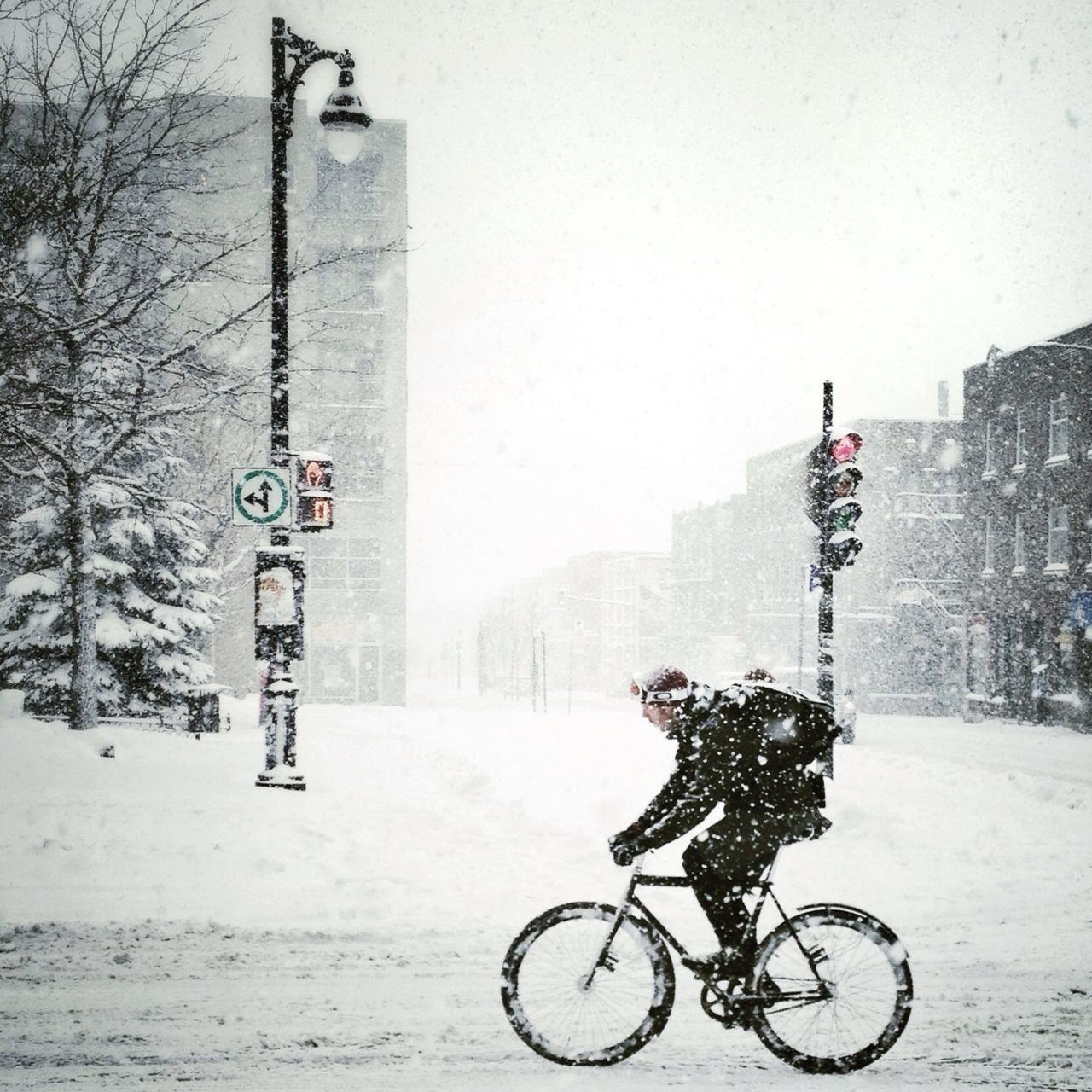 Beautiful stock photos of bike, Adult, Bicycle, Blizzard, Canada