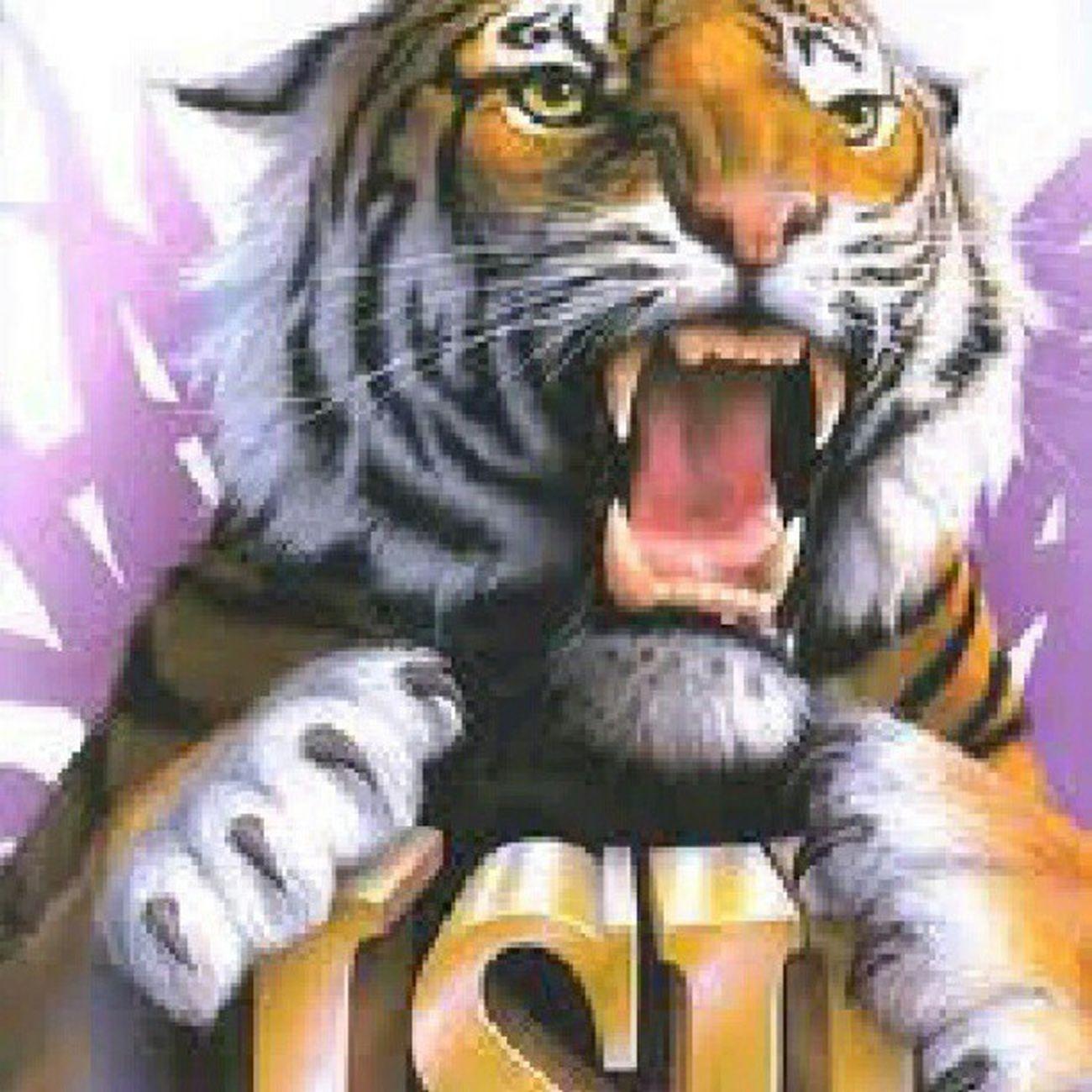 TeamLSU GO tigers!