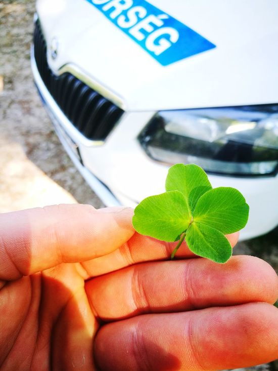 Human Hand Four Leaf Clovers 🍀 Holding Human Body Part Human Finger One Person Leaf Day Close-up People Lifestyles Adult Outdoors Water Adults Only Nature Freshness Sky