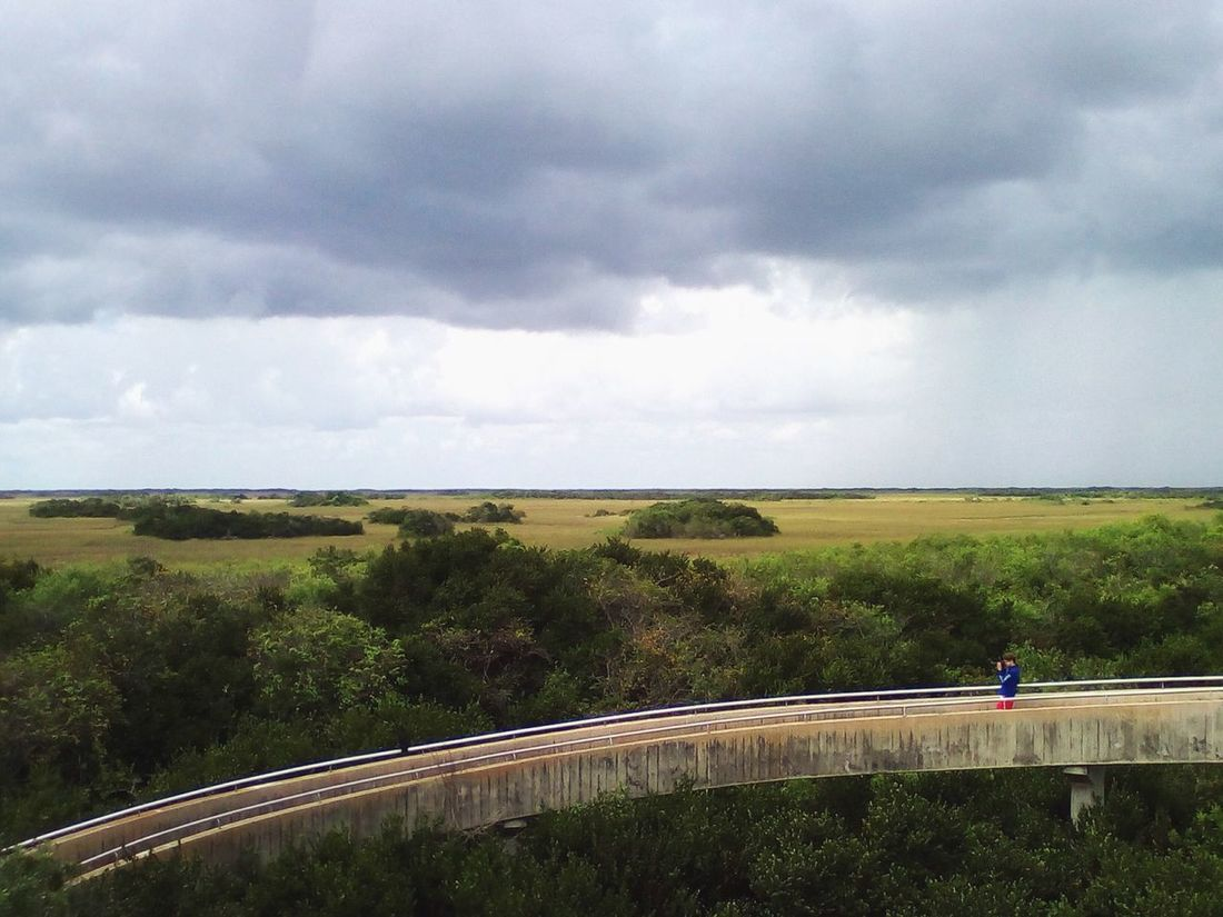 Beauty In Nature Cloud - Sky Day Everglades  Florida Full Length Hill Landscape Nature One Person Outdoors Plant Scenics Shark Valley Observation Tower Sky Tree The Great Outdoors - 2017 EyeEm Awards
