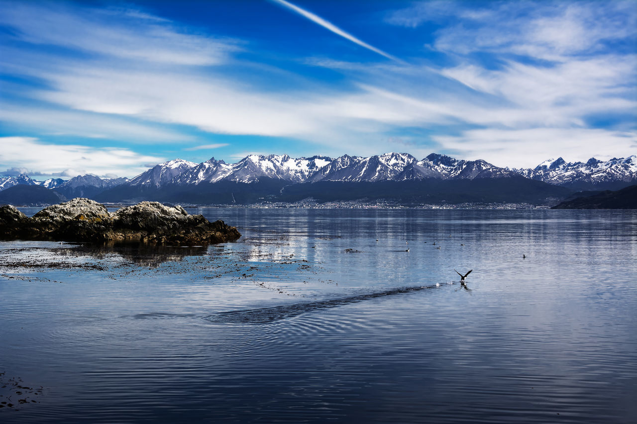 Beagle channel and Ushuaia in background. Bird starting to fly on the water (Argentina) Argentina Beagle Channel Bird Fin Del Mundo Land Of Fire Mountain Patagonia Sea Sky Snowcapped Tierra Del Fuego Ushuaïa Water