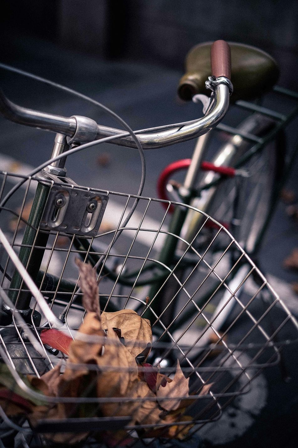 Beautiful stock photos of bike, Aging Process, Bicycle Basket, Day, Dry