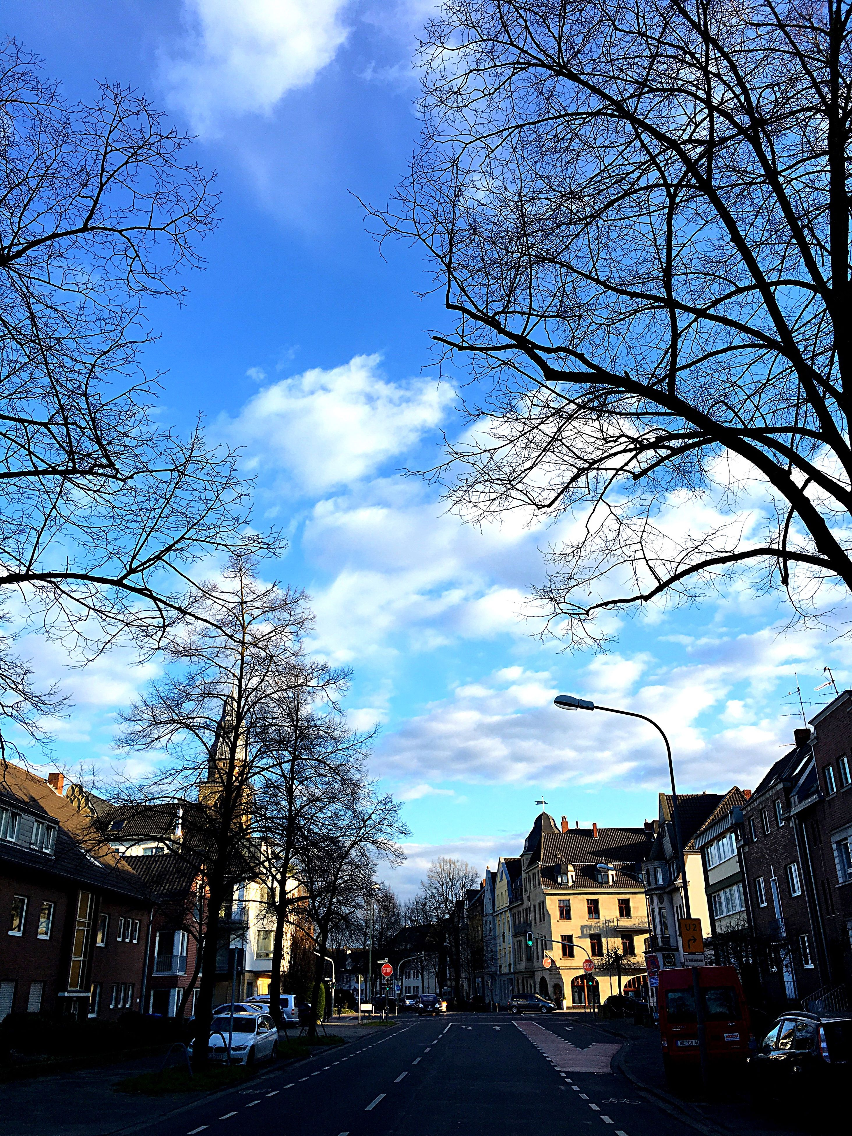 building exterior, transportation, sky, built structure, architecture, car, the way forward, bare tree, road, street, tree, land vehicle, cloud - sky, city, diminishing perspective, cloud, mode of transport, vanishing point, residential building, house