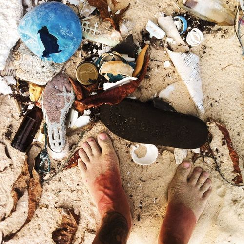 "welcome to the paradise – ""beached civilization"" Barnacles Beach Beached Close-up Day Environment High Angle View Litter Nature Nature Photography Nature_collection Naturelovers No People Ocean Outdoors Pollution Reconquest Rubbish Sand Shells Trash Travel"