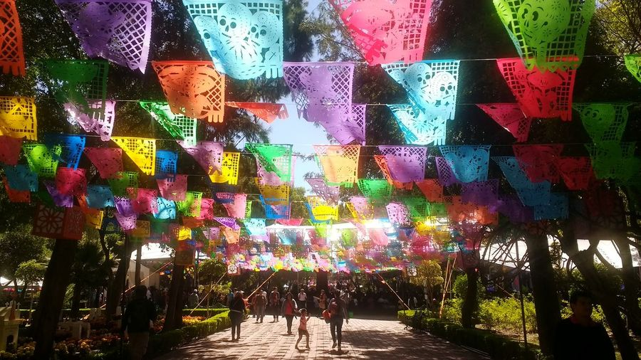 Multi Colored Day Outdoors Park Dia De Muertos México