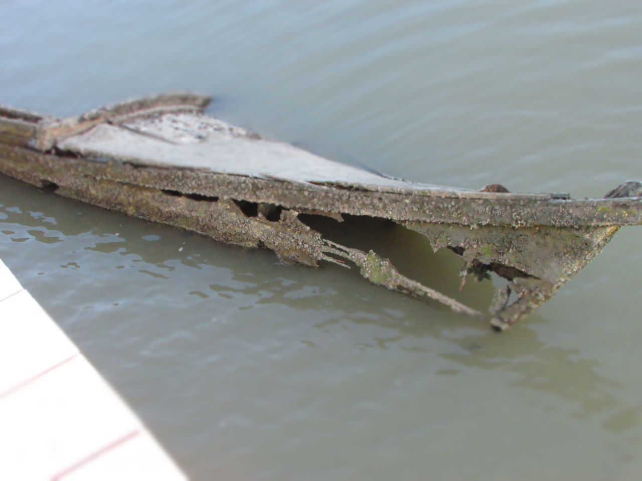 Check This Out EyeEm Best Shots EyeEm Gallery EyeEmBestPics Old Boat Wrecked