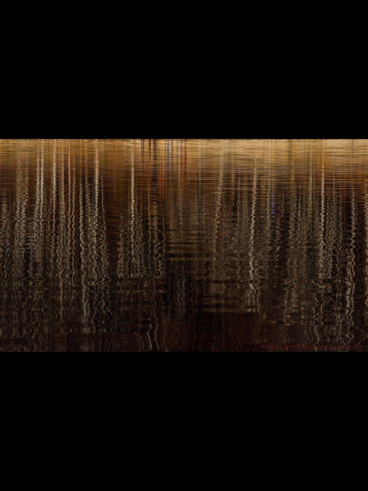 Reflejos de un bosque de pinos sobre la superficie del agua Landscape Reflection Water reflejo Reflejos agua Pantano paisaje Colorful