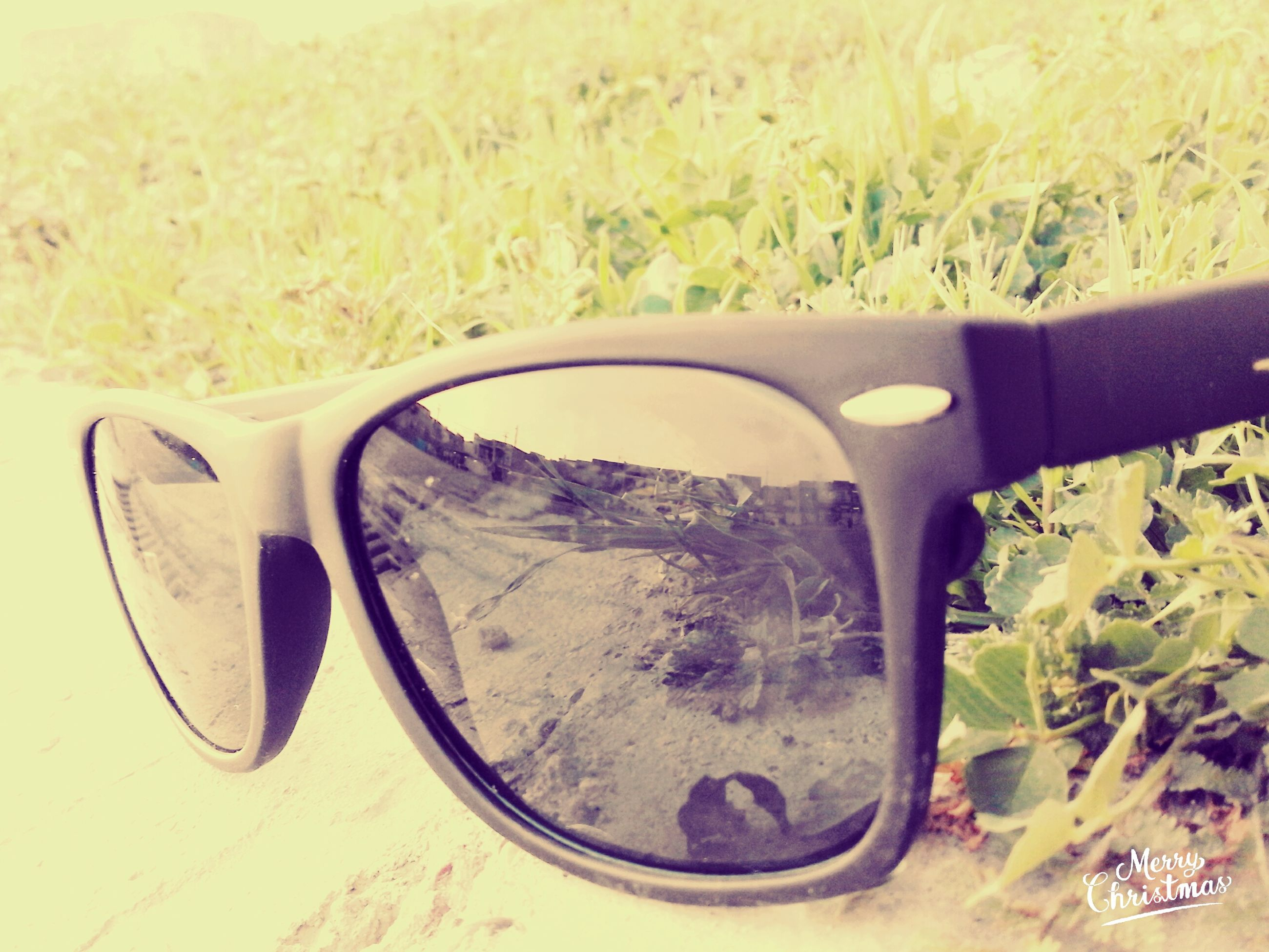 mode of transport, transportation, grass, land vehicle, car, reflection, field, close-up, side-view mirror, part of, sunglasses, glass - material, transparent, day, indoors, grassy, vehicle interior, cropped, mirror, no people