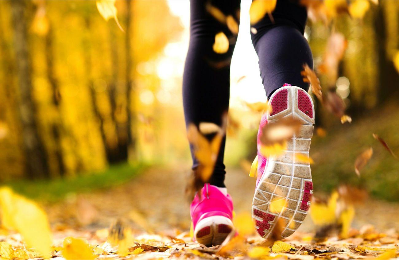 Beautiful stock photos of shoe, Autumn, Change, Day, Field