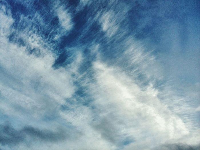 Sky Enjoying Life