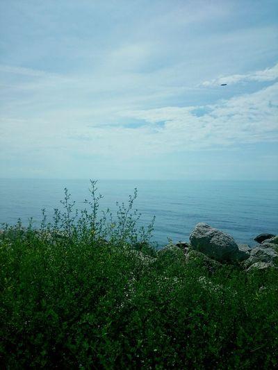 Черное море First Eyeem Photo
