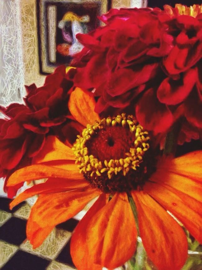 Zinnias from the Argenta Farmers' Market EyeEm Nature Lover Flowers Flowerporn ObsessiveEdits