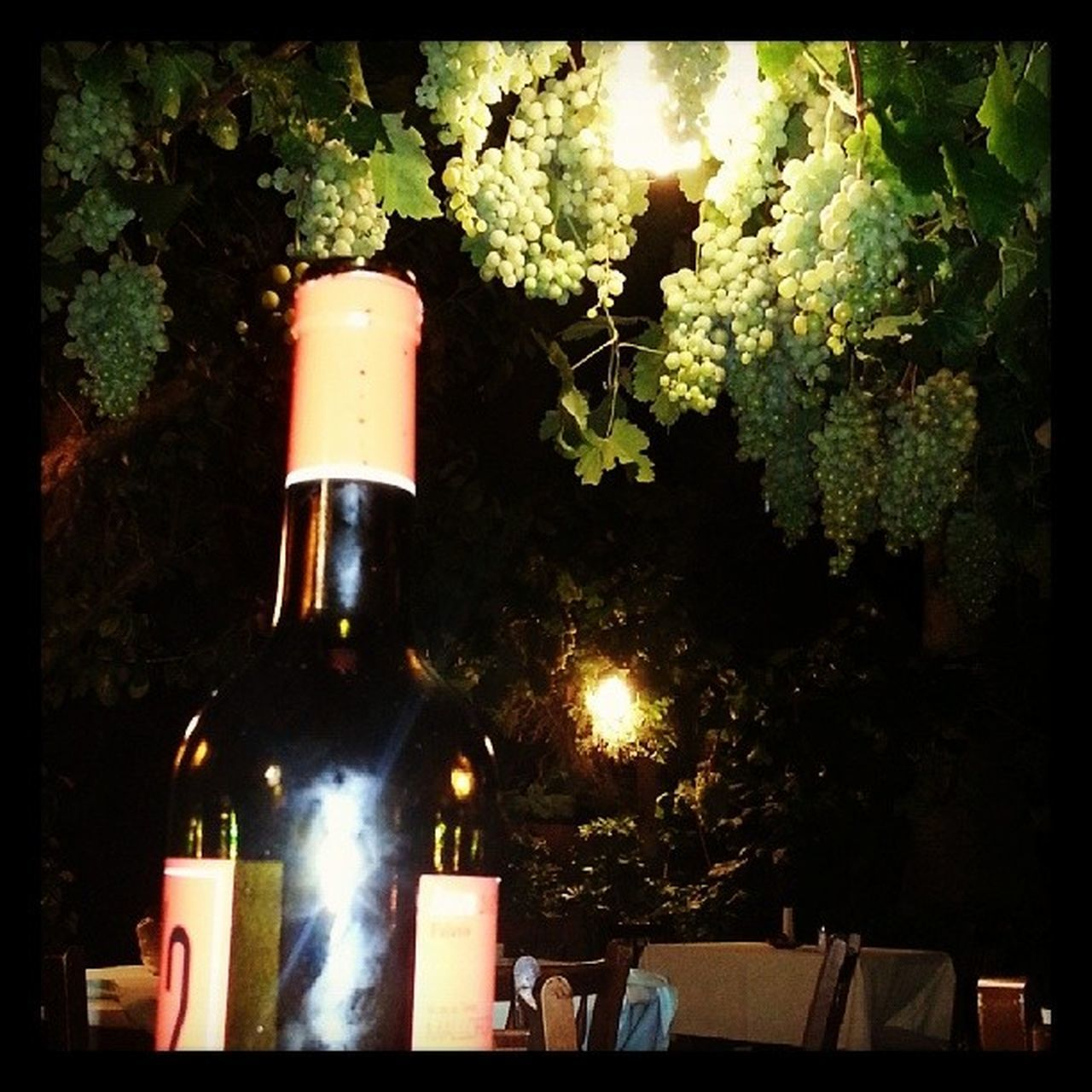 bottle, wine bottle, wine, no people, tree, outdoors, alcohol, cork - stopper, close-up, night