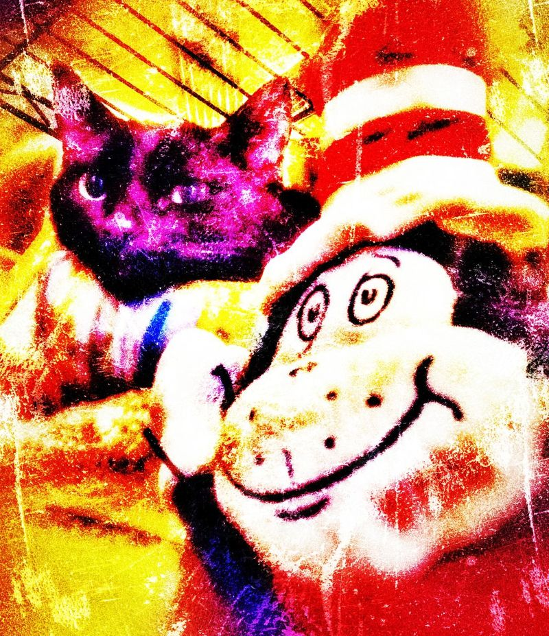 Hi Ying and the cat in the hat special effects brighten color fun photos Close-up Indoors  Day Black Cat Photography No People Adopt To Save A Life Black Cat cat in the hat Cat In The Hat Hi Ying My Black Cat Cat Colection Black Cat Coletion