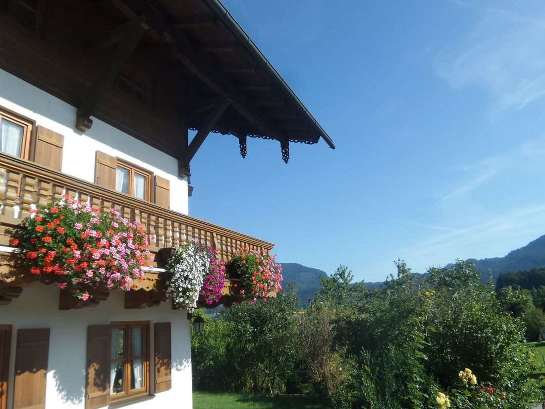 Alm Cute Cute House Flowers Germany Home House Landscape Mountains Panorama Sky Tirol