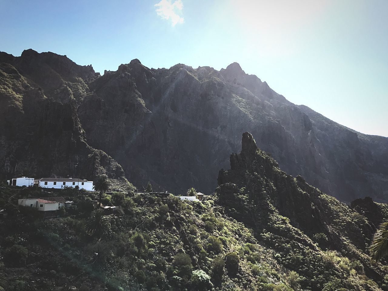 Mountain Beauty In Nature Nature Tree Scenics No People Outdoors Tranquility Sky Landscape Day Shelter Masca Tenerife Island Teneriffa Schlucht Canyon