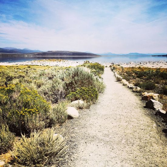 Is that my path? Monolake California The Journey Is The Destination Landscape Natural Beauty Stunning Path Nature Beauty In Nature Showcase July Colour Of Life Light Hope Way To Go Journey Journey Into The Light EyeEm Nature Lover Eyeemphotography Eyeemphoto Nature Photography Nature On Your Doorstep Light Up Your Life Sommergefühle Let's Go. Together.