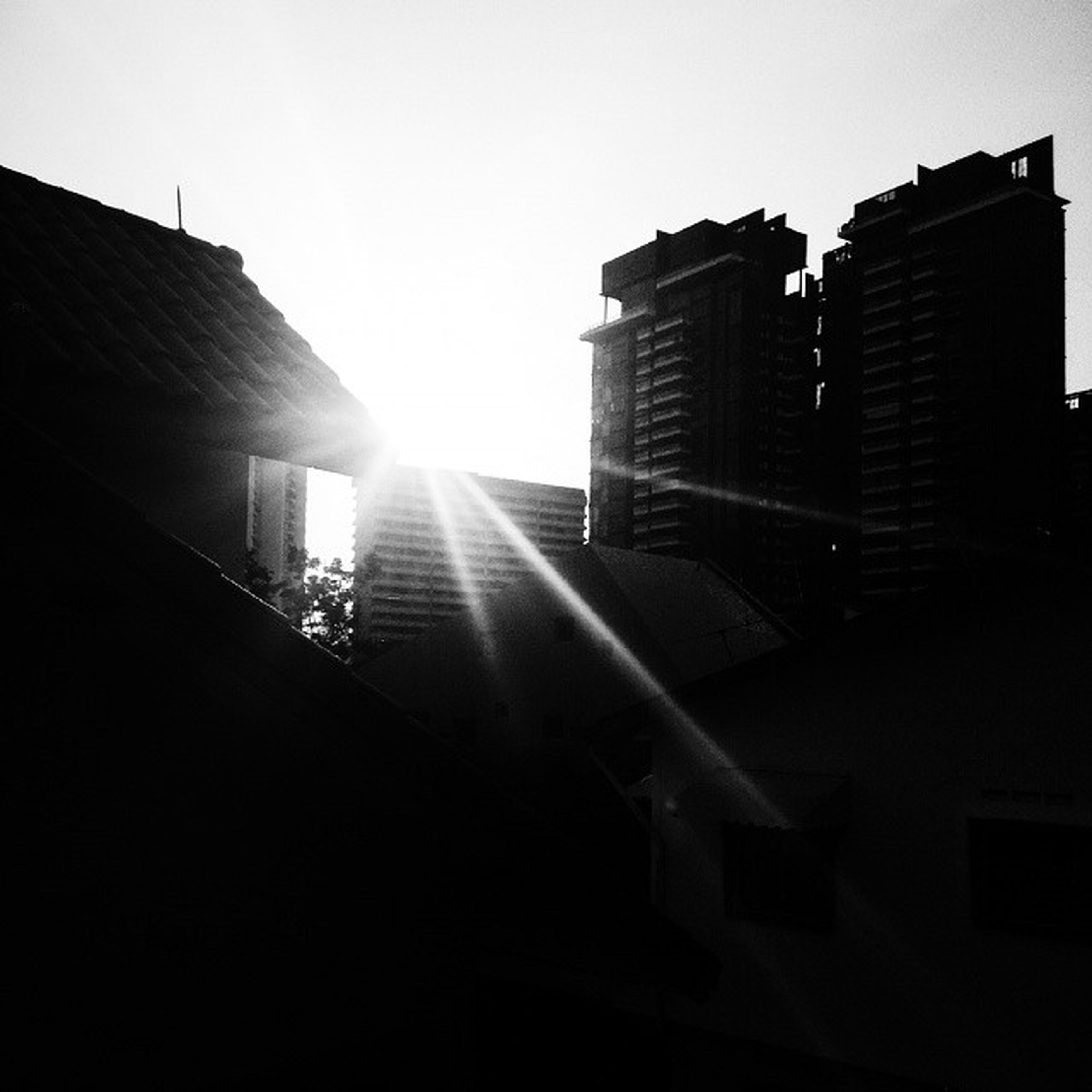 building exterior, architecture, built structure, sun, sunbeam, sunlight, building, clear sky, lens flare, city, low angle view, residential building, sky, residential structure, silhouette, sunny, no people, outdoors, day, sunset