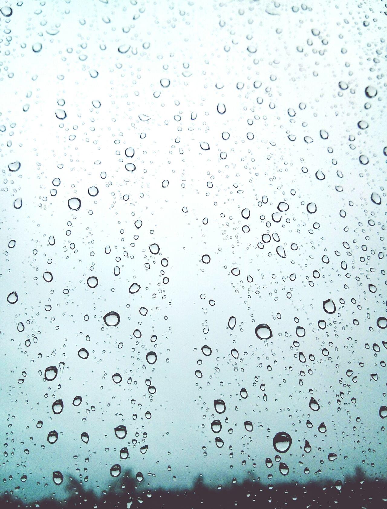 Rain Drops Window Halifax Nova Scotia Seasons Change