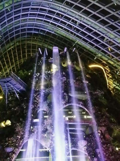 Whimsical or Magical? Gardens By The Bay Clouddome Manmadewaterfall Cities At Night