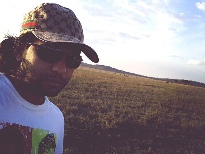 migrating wildebeest behind me...